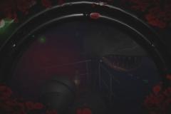 Submersed_20190225170628