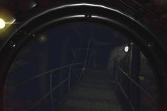 Submersed_20190226101421